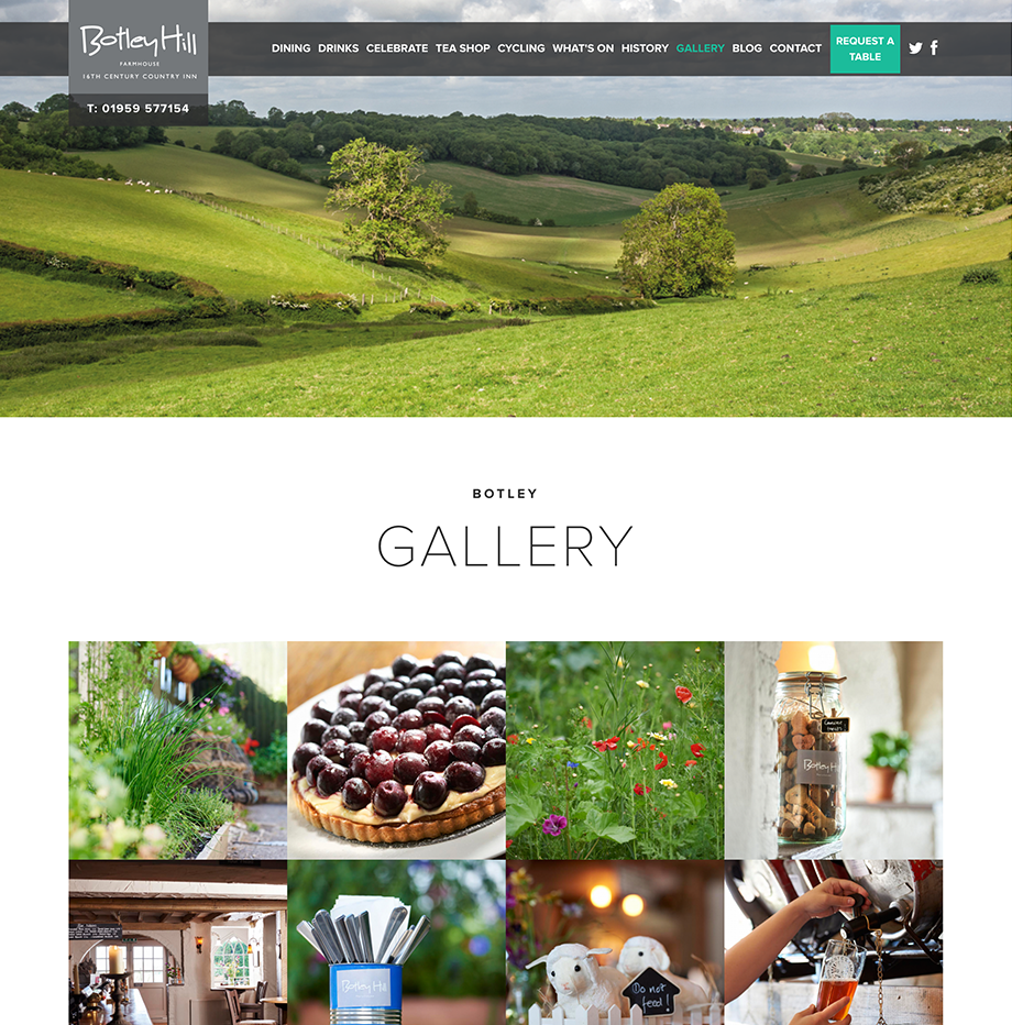 webpages-knibbs-botley-hill-gallery.png